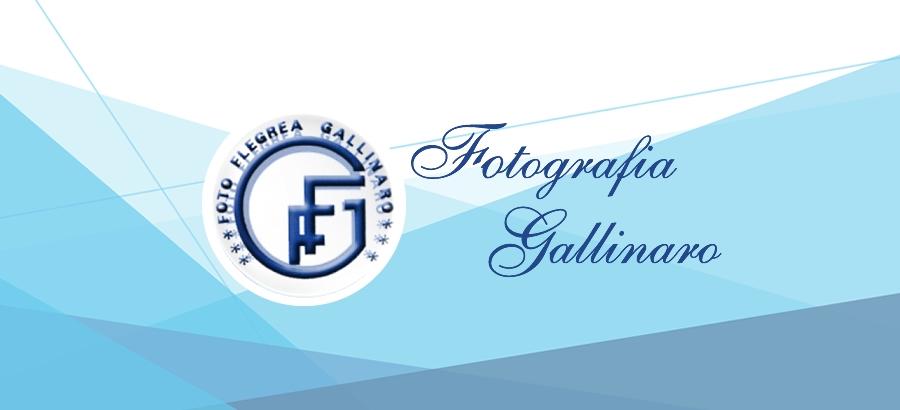 Fotografia Gallinaro